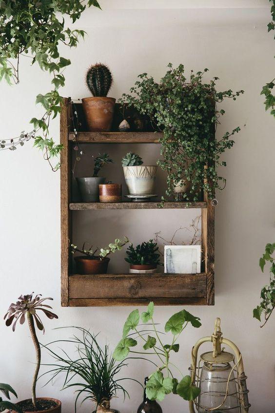 kệ trang trí cây xanh đẹp bằng gỗ