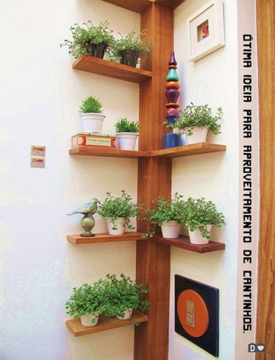 kệ trang trí treo cây xanh tại góc tường