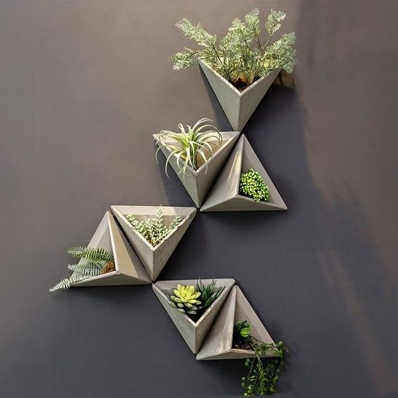 kệ trang trí cây cảnh mini treo tường